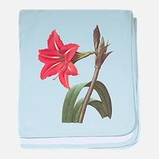Redoute Amaryllis baby blanket
