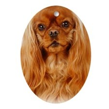 Cavalier King Charles Spaniel - Ruby Oval Ornament