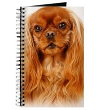 Cavalier King Charles Spaniel - Ruby Rodeo Journal