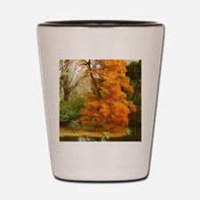 Willow in Autumn colors Shot Glass