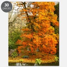 Willow in Autumn colors Puzzle