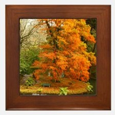 Willow in Autumn colors Framed Tile