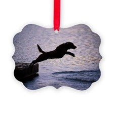 Chesapeake Bay Retriever Leaping  Ornament