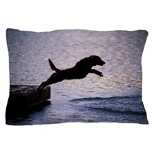 Chesapeake Bay Retriever Leaping In th Pillow Case