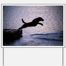 Chesapeake Bay Retriever Leaping In the  Yard Sign