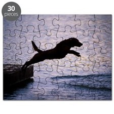 Chesapeake Bay Retriever Leaping In the Wat Puzzle