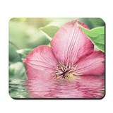 5x7 Mouse Pads