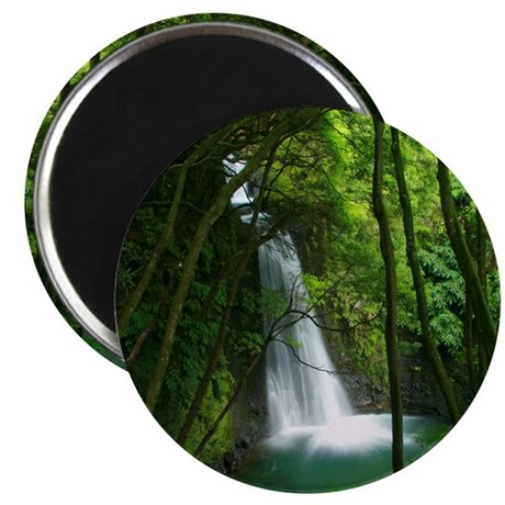 Waterfall in Azores Magnet