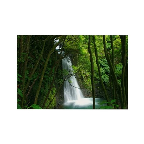 Waterfall in Azores Rectangle Magnet