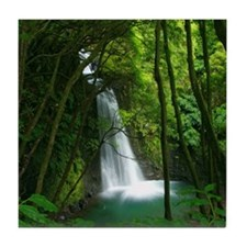 Waterfall in Azores Tile Coaster