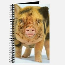 Messy micro pig Journal