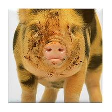 Micro pig looking messy Tile Coaster