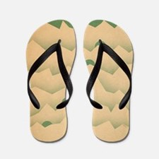 Mountain Moon Rising Flip Flops