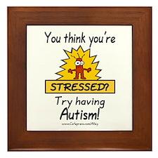 Autism Stress Framed Tile