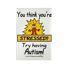 Autism Stress Rectangle Magnet