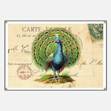 Vintage French peacock and postcard Banner