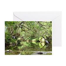 Turkey Creek Wildlife Greeting Card