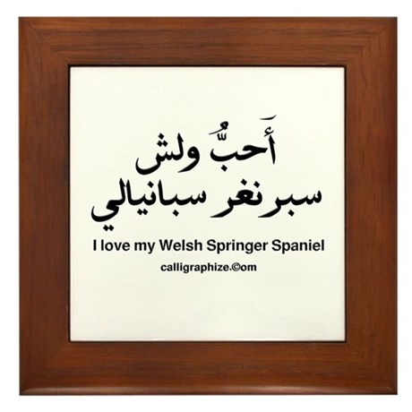 Welsh Springer Spaniel Dog Framed Tile