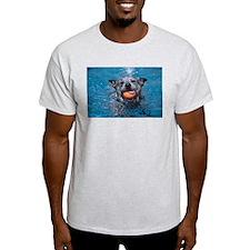 ACD Water Fetch! T-Shirt