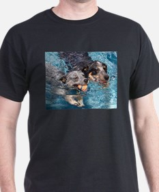 Cattle Brothers Racing in the pool T-Shirt