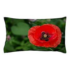 Red Poppy Pillow Case