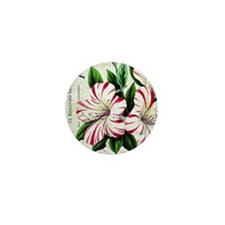 Vintage French Christmas amaryllis Mini Button