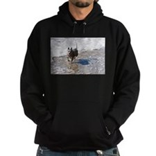 Wiley, the ACD at the Beach Hoodie