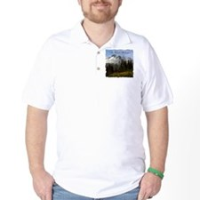 Mt. Rainier #3 T-Shirt
