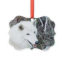 """Cree-ko"" Ornament"