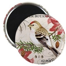 modern vintage winter garden bird and amary Magnet