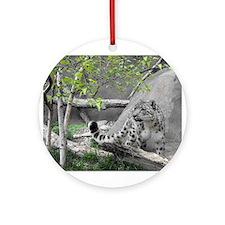 snow leopard.jpg Ornament (Round)