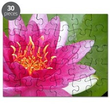 Waterlily - Coin Purse Puzzle