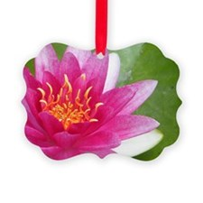 Waterlily - Coin Purse Picture Ornament