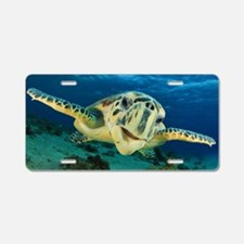 Sea Turtle Soar Aluminum License Plate