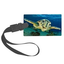 Sea Turtle Soar Luggage Tag