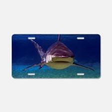 Shark Encounter Aluminum License Plate