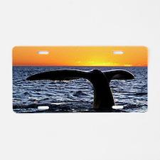 Sunset Fluke Aluminum License Plate