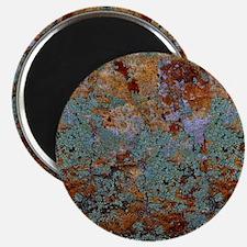 Rustic Rock Lichen Texture Magnets
