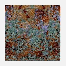 Rustic Rock Lichen Texture Tile Coaster