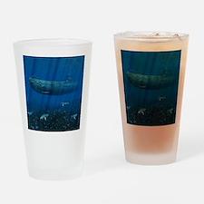 shower_curtain Drinking Glass