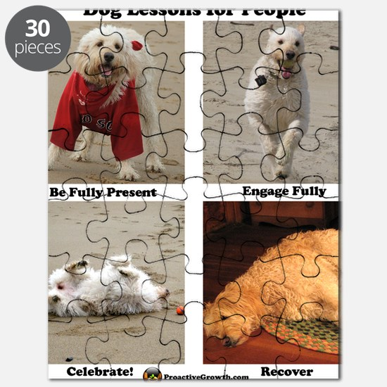 Dog Lessons for People Puzzle