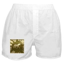 metal art unicorn golden Boxer Shorts