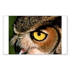 Great Horned Owl Rectangle Decal