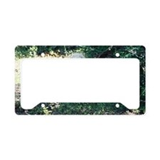"""""""Eager  Wolf"""" License Plate Holder"""