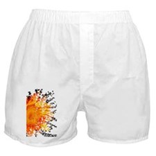 Orange Sunflower Burst Into Butterfli Boxer Shorts