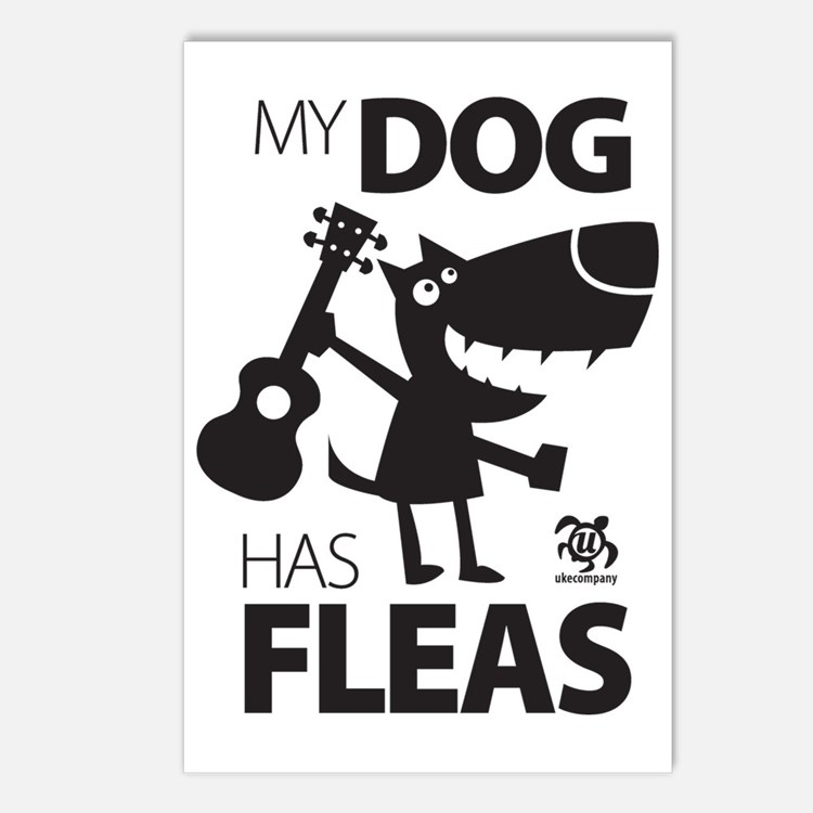My Dog Has Fleas 13 Postcards (Package of 8)