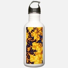 DR - galaxyS3 Water Bottle