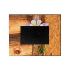 Columbine and Wood Picture Frame