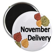 NOVEMBER  DELIVERY Magnet