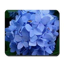 Blue Violet Hydrangea Mousepad